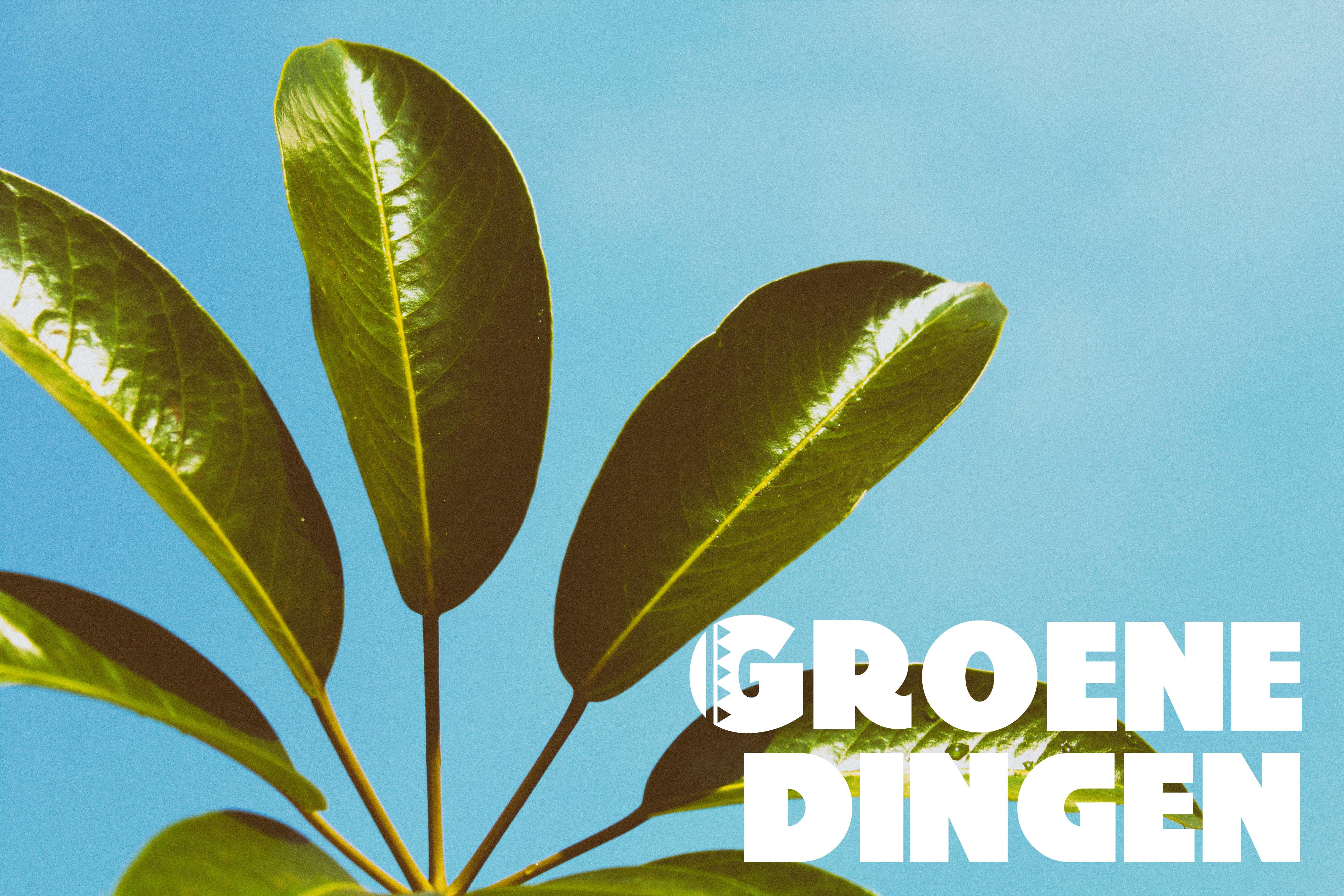 groene dingen